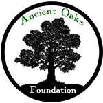 Ancient Oaks Foundation Mobile Retina Logo