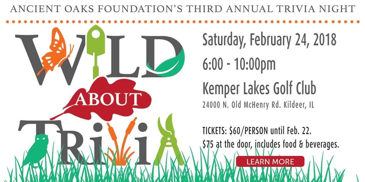 Wild About Trivia event information - click for more details