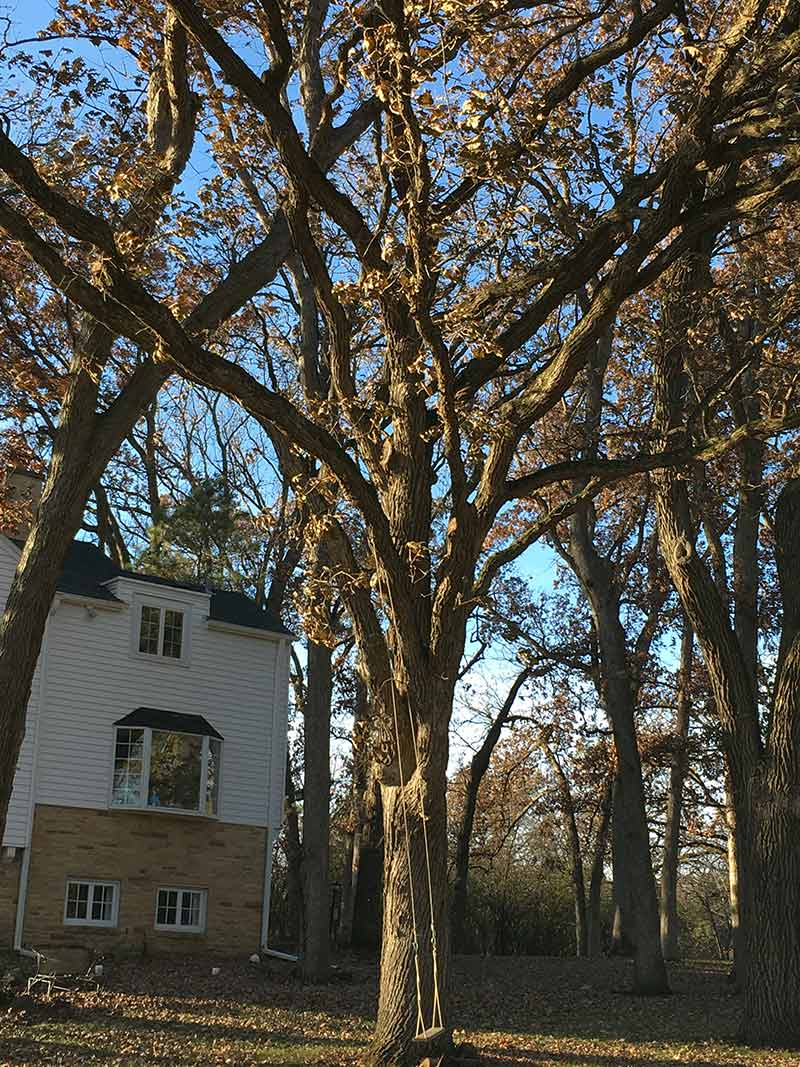 12 Brierwoods Lane, Hawthorn Woods