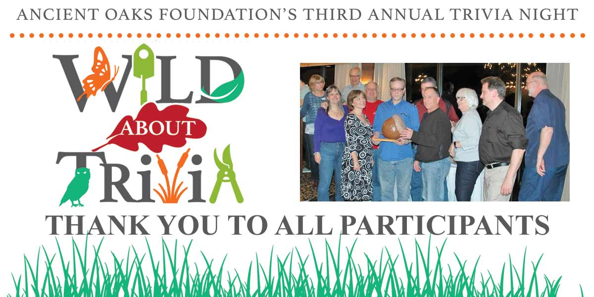 Wild About Trivia - Thank You to all participants