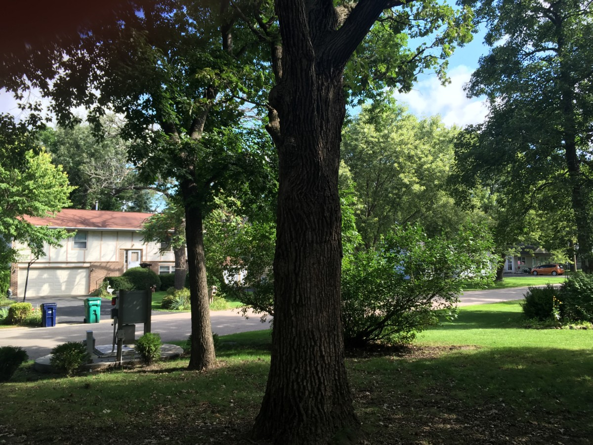 23707 Hearthside, Deer Park, IL