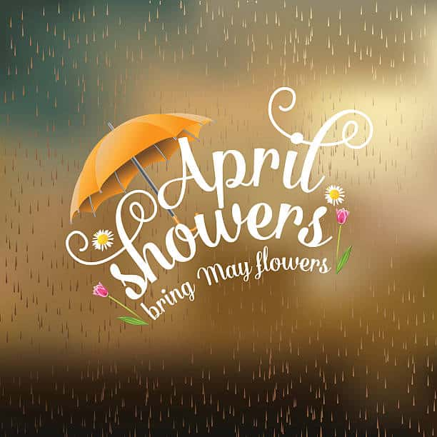 April Showers (& Snow), Will Bring May Flowers! - Ancient